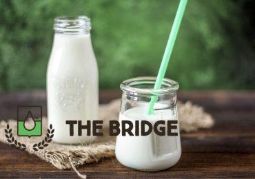 SAP supporta la crescita di The Bridge nel mercato dei prodotti biologici e vegetali
